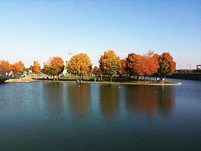 צבעי שלכת בנהר סנט לורנס (צילום: סיון רביב)
