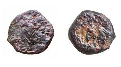 המטבעות שהוטבעו לאחר מותו של הורדוס (צילום: ולדימיר נייחין)