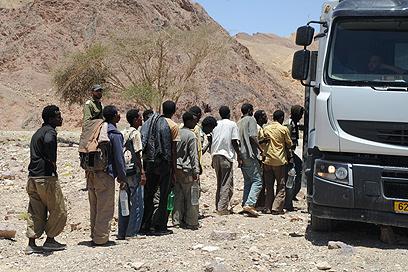 מהגרים מאריתריאה שחצו את הגבול לישראל (ארכיון) (צילום: יאיר שגיא)