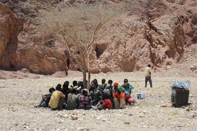 מבקשי מקלט בגבול מצרים (צילום: יאיר שגיא, ידיעות אחרונות)