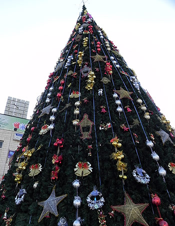 Bethlehem's Christmas Tree