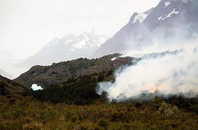 """אזור השריפה בצ'ילה. """"הולכים בסופרים ומקללים"""" (צילום: AFP)"""