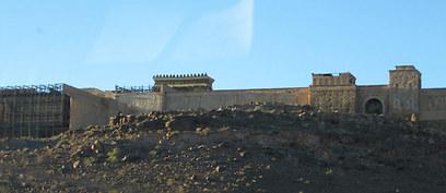 פתאום, באמצע המדבר (צילום: שחר זגורי, צפת)