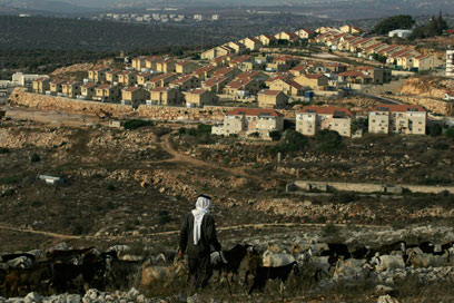 המועצה תבדוק את השלכות ההתנחלויות על הפלסטינים (צילום: AP)