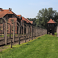 Laid yellow and red flowers .  Auschwitz death camp Photo: Shutterstock
