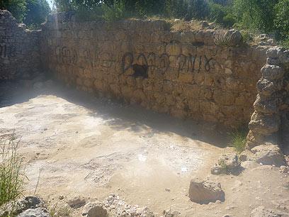 הכתובת שרוססה באתר העתיקות (צילום: תומר זקסנברג)