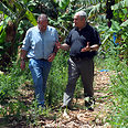 Netanyahu and Greenberg at Banana plantation Photo: GPO