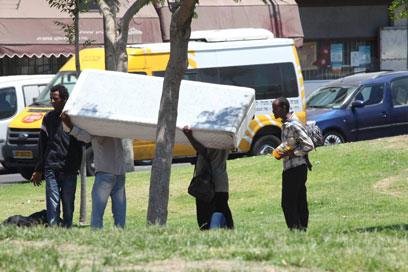 """""""יש בשטח המון מקרים בעייתיים"""". מתכוננים לגירוש בתל-אביב (צילום: מוטי קמחי)"""