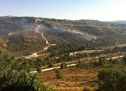 אזור השריפה, היום ירושלים. מדרון תלול הקשה על הכבאים (צילום: דניאל ברזן)