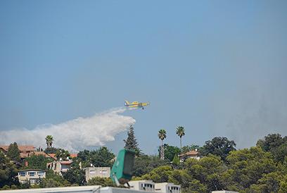 מטוס כיבוי מסייע בשריפה מעל טבעון (צילום:  זיו רוזנצוויג)