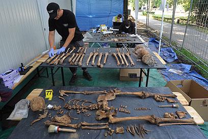 מנסים לחבר עצמות, בוחנים דגימות DNA (צילום: AP)
