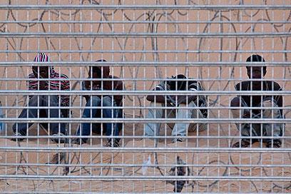ממתינים להכרעה. אריתריאים בגבול (צילום: רויטרס)