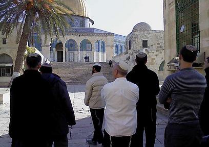 יהודים מתפללים בהר הבית (צילום: באדיבות המטה המשותף של תנועות המקדש)