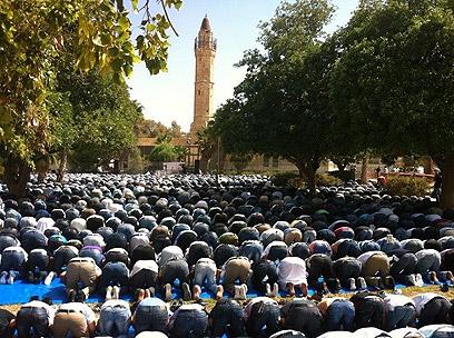 תפילה המונית במסגד (צילום: סארי אבו סעלוק)