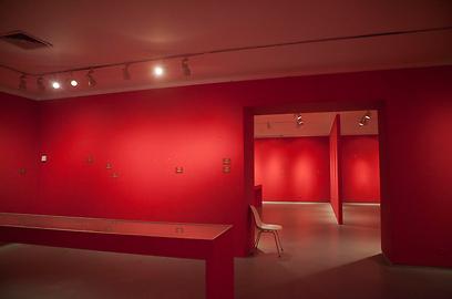 הקירות החשופים בתערוכת שושלת ברויגל במוזיאון תל אביב (צילום: AP)