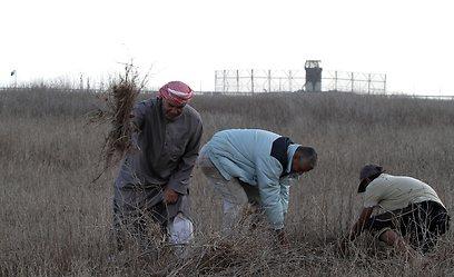 חקלאים פלסטינים, ליד הגדר (צילום: AFP)