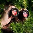 (Illustration) Photo: Shutterstock
