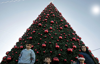 ילדים פלסטינים ליד עץ אשוח בבית לחם (צילום: AFP)