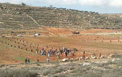 מתנחלים ופלסטינים התעמתו ליד יצהר (צילום: סוכנות תצפית)