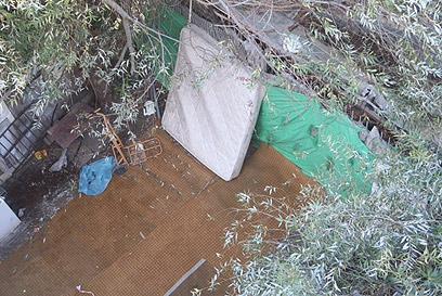 זירת אונס הקשישה בדרום תל אביב (צילום: מוטי קמחי)