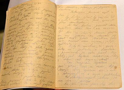 """28 עמודים בפולנית על תקופת השואה (צילום: מארק נימן, לע""""מ)"""