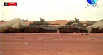 צבא אלג'יריה שיגר כוחות שנלחמו בטרוריסטים  (צילום: רויטרס)