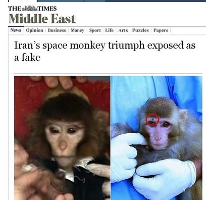 """התמונות ששלף העיתון """"טיימס"""" (צילום: הטיימס הלונדוני)"""