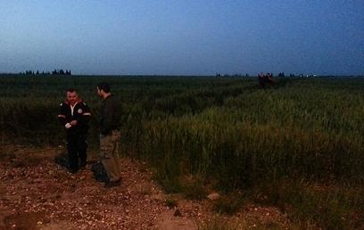 האזור שבו התרסק המטוס (צילום: רועי עידן)
