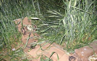 שרידי המסוק שהתרסק (צילום: yyz)