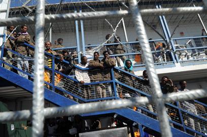 """""""עשרות יחזרו בקרוב לארצם"""". כלא סהרונים (ארכיון) (צילום: חיים הורנשטיין   )"""