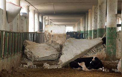 """שר סורי: """"חייבים להגיב"""" (צילום: EPA)"""