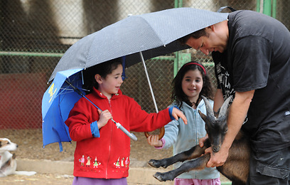 גשם ומטריות הבוקר בקיבוץ עמיר (צילום: אביהו שפירא)