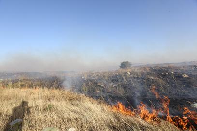 שריפה בגבול (צילום: חגי אהרון )