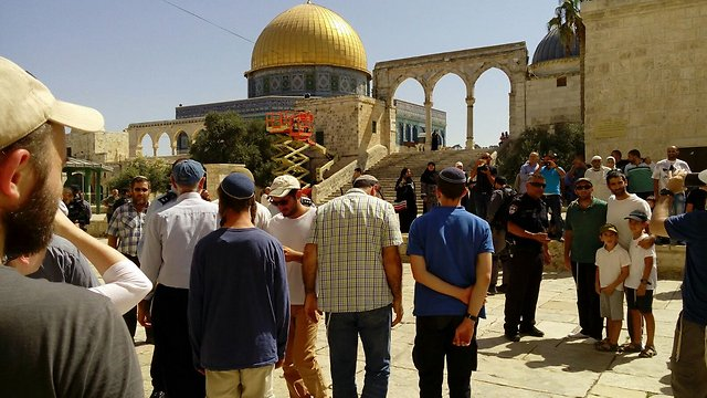 Jew Detector: More Than 12,000 Jews Visit Temple Mount Since September