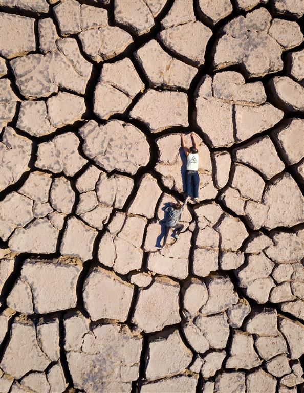 Копи Тимны. Фото: Ром Карми