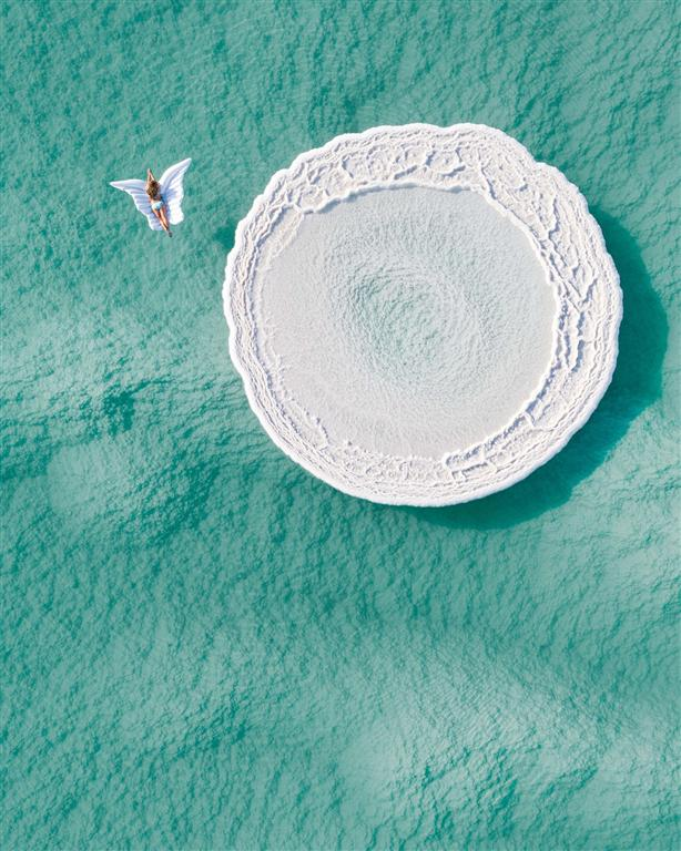 Бабочка на Мертвом море. Фото: Шимон Перлштейн