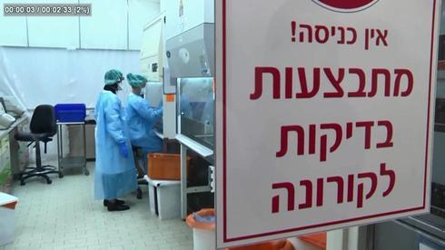Лаборатория анализов на коронавиру. Фото: Амит Ховер (Photo: Amit Hover)
