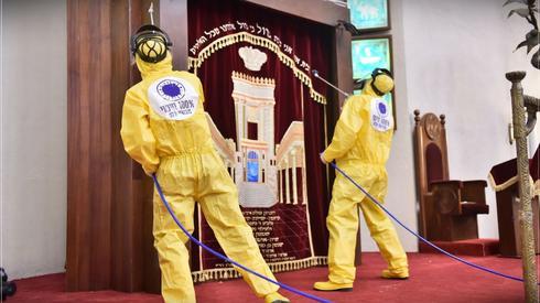 Санобработка Большой синагоги в Тель-Авиве. Фото: Орен Хен (Photo: Oren Hen)